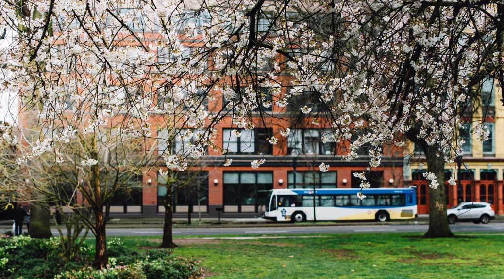 A Spring Break from Screens: 21 Kid-Friendly Ideas Around Portland